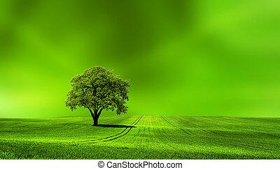 la terre, vert