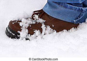 laars, dag, sneeuw