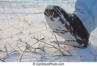 laars, sneeuw