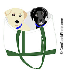 Lab puppies in a Bag!