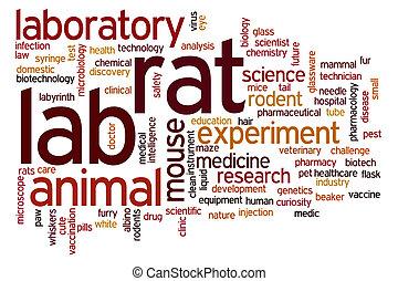 Lab rat word cloud - Lab rat concept word cloud background