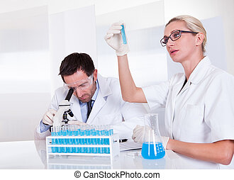 Lab technicians at work in a laboratory