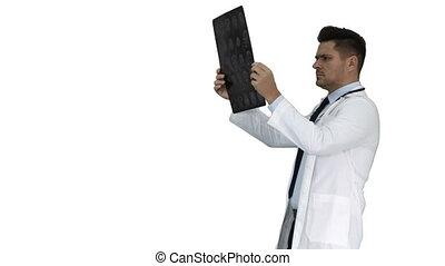 labcoat, balayage, marche, radiographic, personnel, image, regarder, arrière-plan., quoique, mri, healthcare, blanc, rayon x, ct