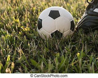 labda, -ban, a, kickoff, közül, egy, labdarúgás, vagy, futball, game., természetes, napnyugta, light., fű, háttér