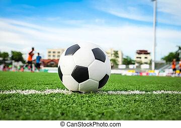 labda, fű, zöld, futball