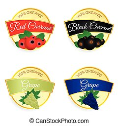 label of fruit currant and grape illustration in colorful