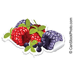 label with berries