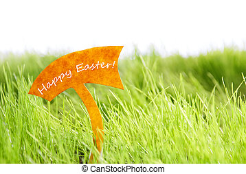 Label With Happy Easter On Green Grass