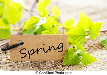 label with Spring
