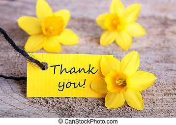 Label with Thank You and Yellow Narcisses