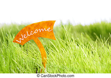 Label With Welcome On Green Grass