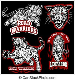 Labels, emblems and design elements for sport club with leopard.