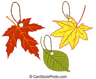 Labels of autumn leaves