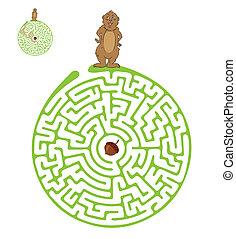 laberinto, nut., marmota, vector, laberinto