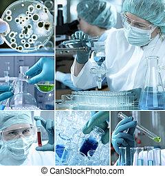 laboratórium, kollázs