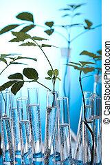 laborat, flore, expérimenter