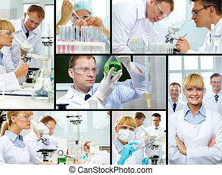 laboratoire, étude