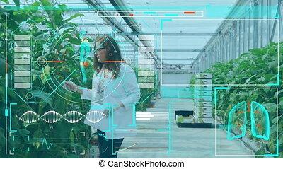 laboratoire, femme, scientifique, serre, interface, fonctionnement, monde médical, contre