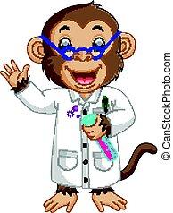 laboratorio, condotta, esperimento, scimmia