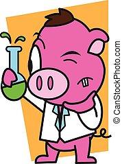 laboratorio, vettore, maiale