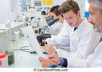laboratorium, observation
