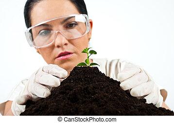 laboratorium, wissenschaftler, botanik