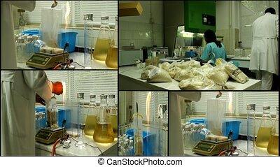 Laboratory analyzing lab equipment microbiology multiscreen