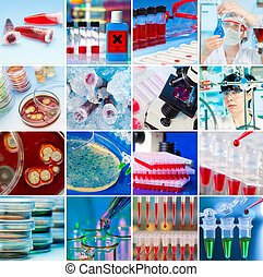 Laboratory Collage