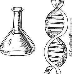 Laboratory flask and DNA helix - Laboratory flask and model...