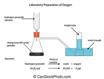 Vector Illustration Of Reaction Of Hydrogen And Oxygen To