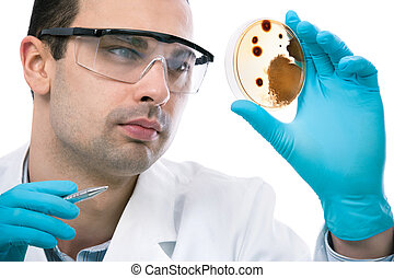 Laboratory - Scientist observing petri dish at the...