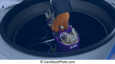 Laboratory technician placing blood bags in machine 4k - ...
