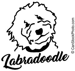Labradoodle head silhouette with name