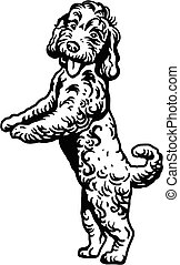 Labradoodle Mix dog - vector isolated illustration in black color on white background