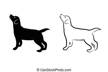 labrador, bild, hund, vektor, hintergrund, weißes