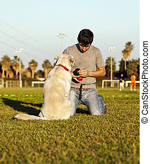 Labrador Dog and Trainer with Chew Toys in Park