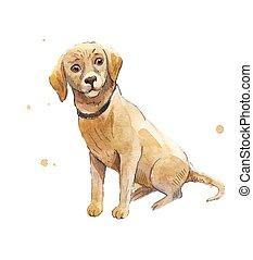 labrador., dog., labrador, assis, main, aquarelle, puppy., sdf, triste, dessin