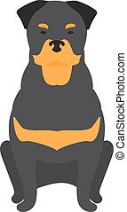 Black Labrador retriever dog domestic animal vector illustration.
