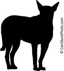 Labrador dog silhouette on a white background