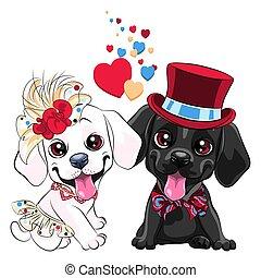 labrador, honden, minnaars, schattig, retriever