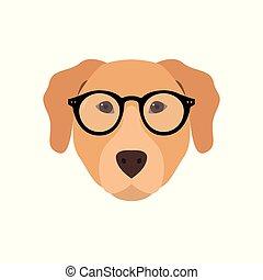 Labrador in glasses.