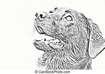 Cucciolo labrador nero render 3d illustrazione d for Piani casa com classico cane trotto stile
