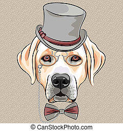 labrador, rasse, hund, vektor, hüfthose, ernst, karikatur,...