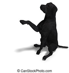 Labrador Retriever Dog. 3D rendering with clipping path and...