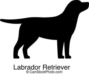 Labrador Retriever dog silhouette, side view, vector...