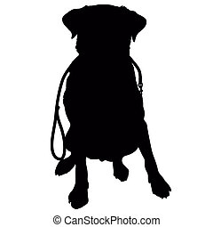 A silhouette of a sitting Labrador Retriever holding a leash in it's mouth and waiting to go for a walk. This could also be a generic short haired dog