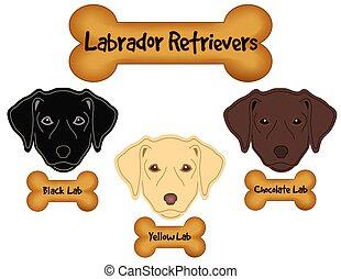 Labrador Retrievers, Black, Chocolate, Yellow Labs, Dog Bone...