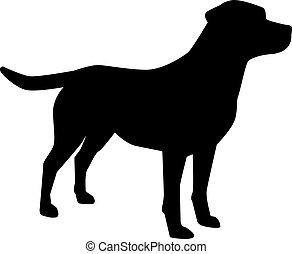 labrador, silueta, perro cobrador