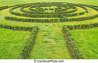 labyrint, buskar, grön