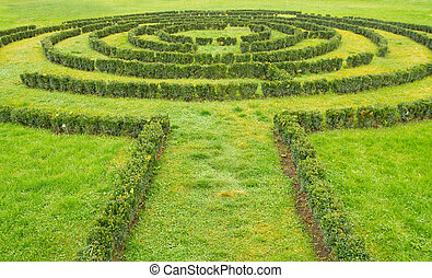 labyrinth, büsche, grün